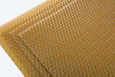 Węza pszczela wielkopolska