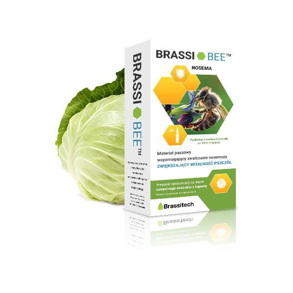 Brassibee
